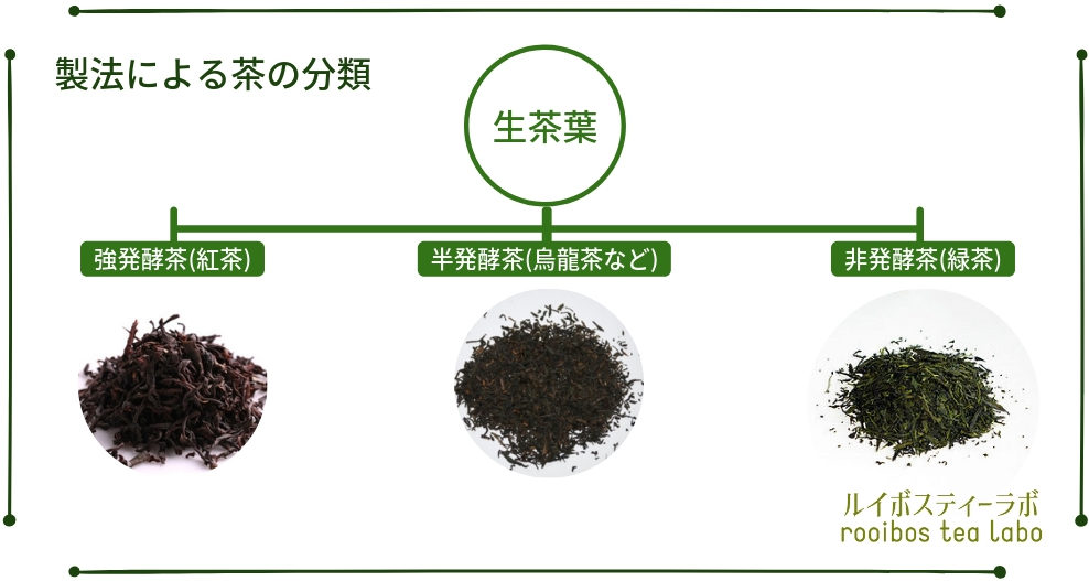 お茶の発酵度合い